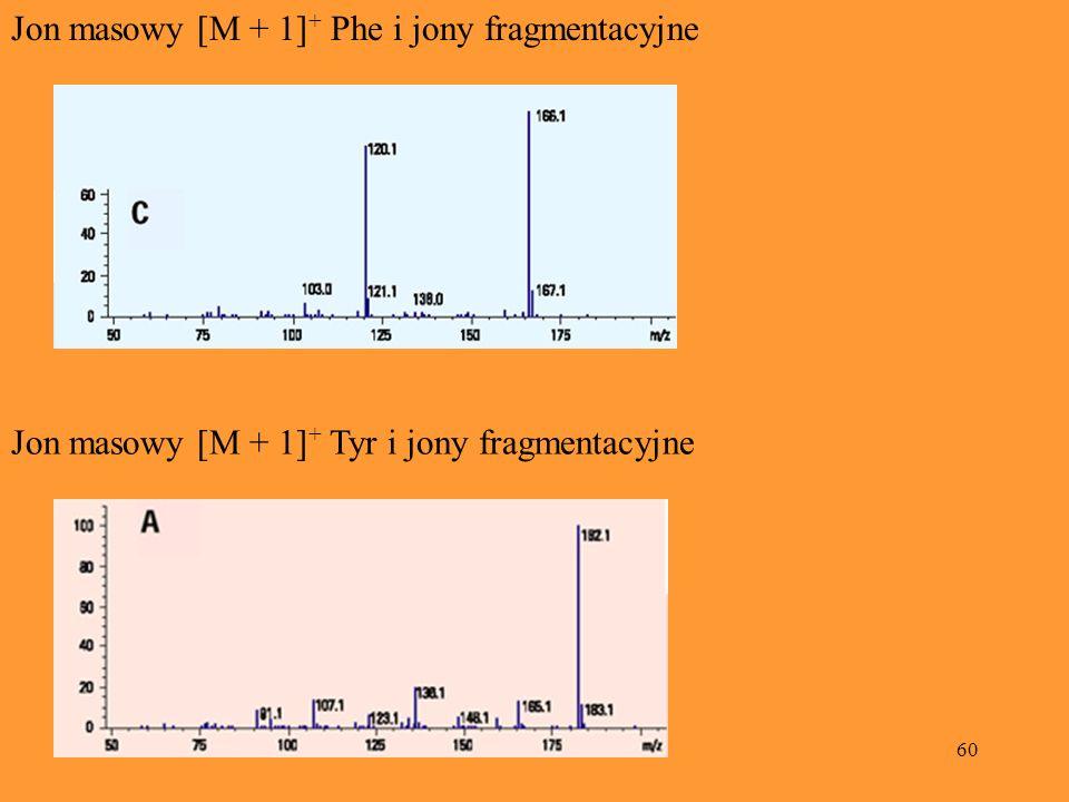 Jon masowy [M + 1]+ Phe i jony fragmentacyjne